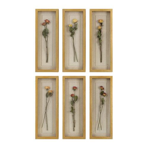 Rosalie Long Stem Shadow Box, Set of Six