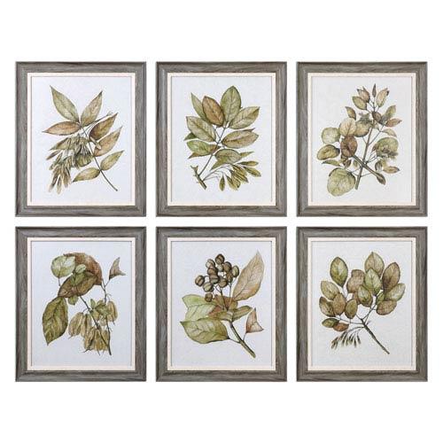 Seedlings Framed Prints, Set of 6