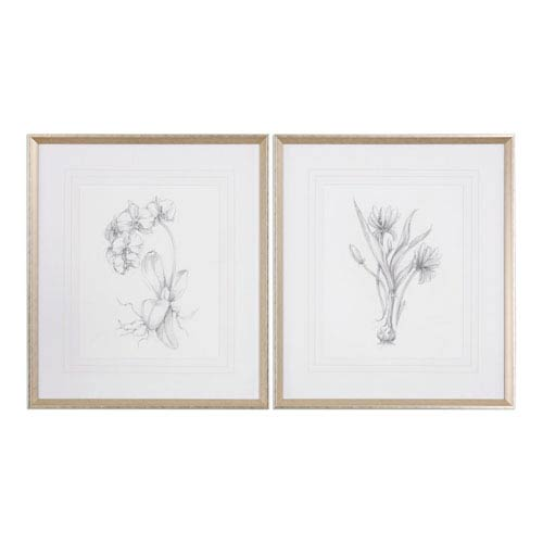 Botanical Sketches Framed Prints, Set of 2
