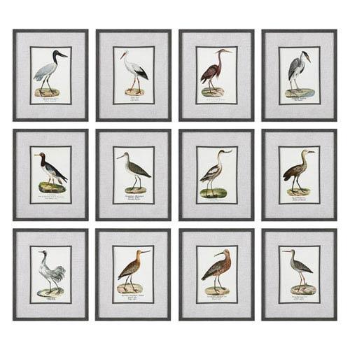 Uttermost Seashore Birds Prints, Set of Twelve