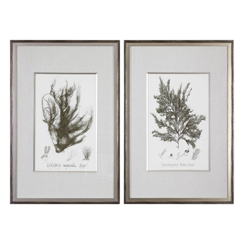 Sepia Seaweed Prints, Set of Two
