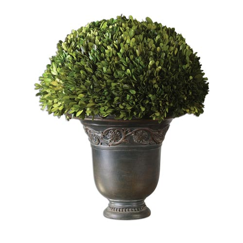 Uttermost Preserved Boxwood Globe