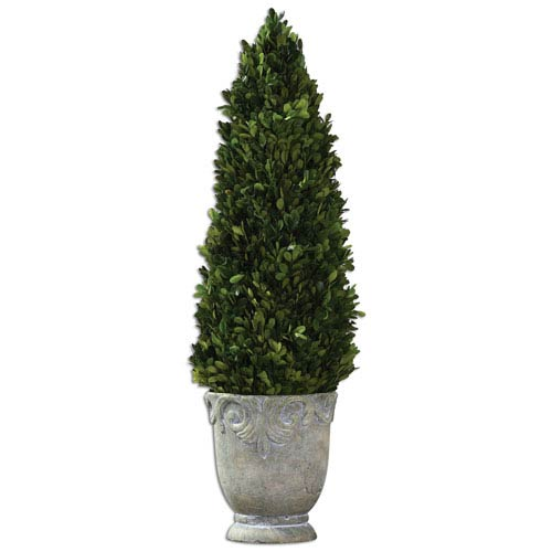 Boxwood Natural Evergreen and Stone Cone Topiary