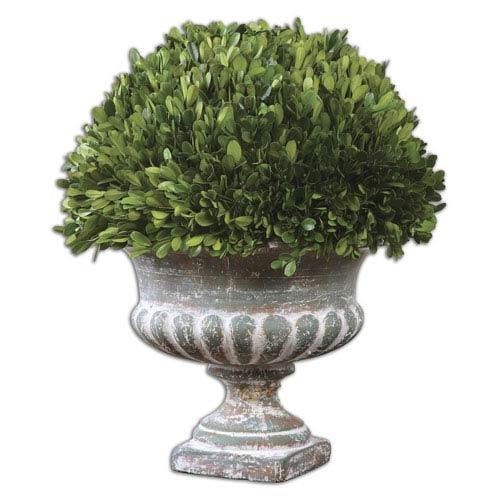 Preserved Boxwood Green and Stony Gray Garden Urn