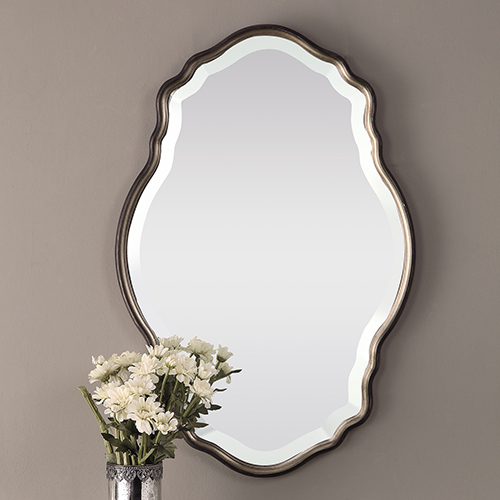 Evelyn Silver Champagne and Dark Bronze Mirror