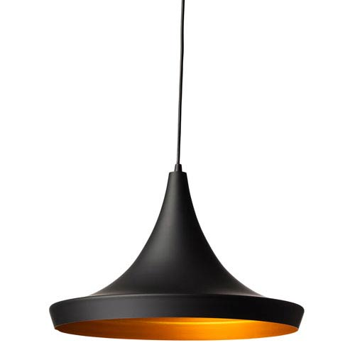 Euclid Black and Matte Gold 18-Inch One-Light Pendant