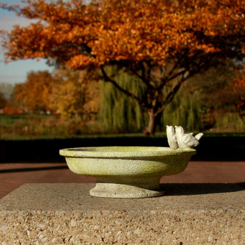 Orlandi Statuary Inc. White Moss Finch Birdbath