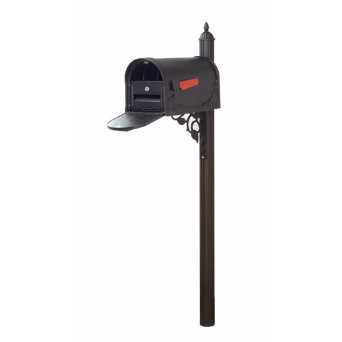 Floral Curbside Mailbox with Locking Insert and Albion Mailbox Post in Black