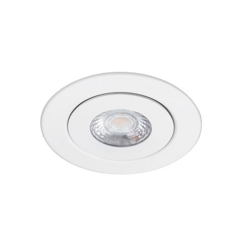 Lotos White LED ADA Adjustable Recessed Light