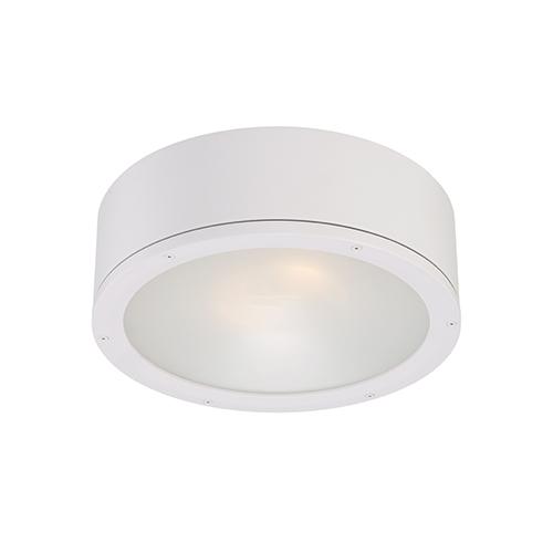 Tube White One-Light LED Outdoor Flush Mount