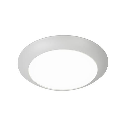 Disc LED ADA Outdoor Flush Mount