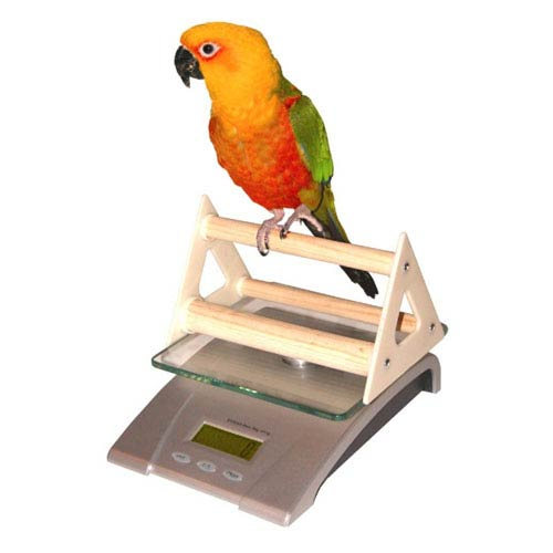 Digital Pet Scales Deluxe Digital Small Animal and Aviary Scale with Perch