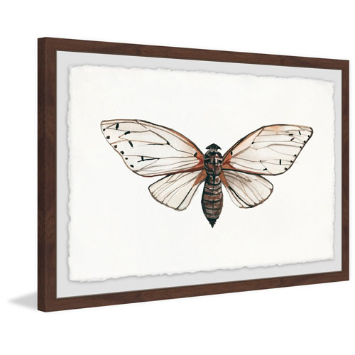 Marmont Hill Tan Butterfly 16 x 24 In. Framed Painting Print