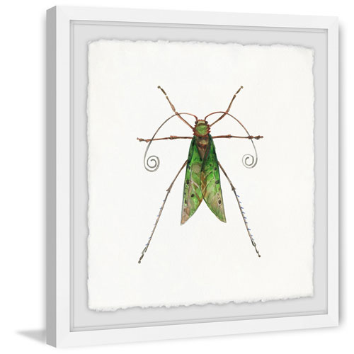 Marmont Hill Green Fly 24 x 24 In. Framed Painting Print