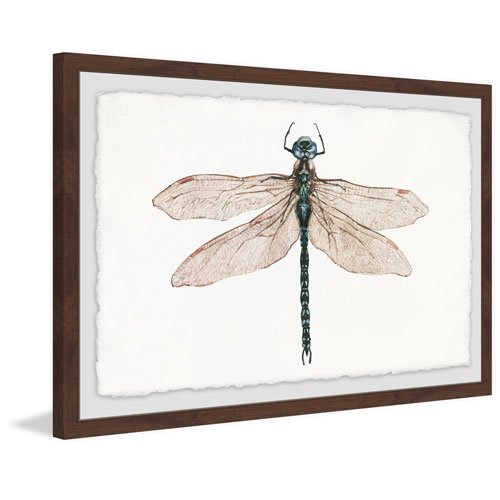 Marmont Hill Dual Wings 12 x 18 In. Framed Painting Print