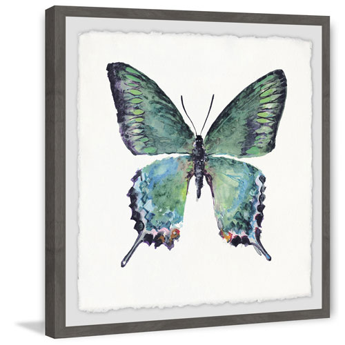 Marmont Hill Watercolor Butterfly 18 x 18 In. Framed Painting Print