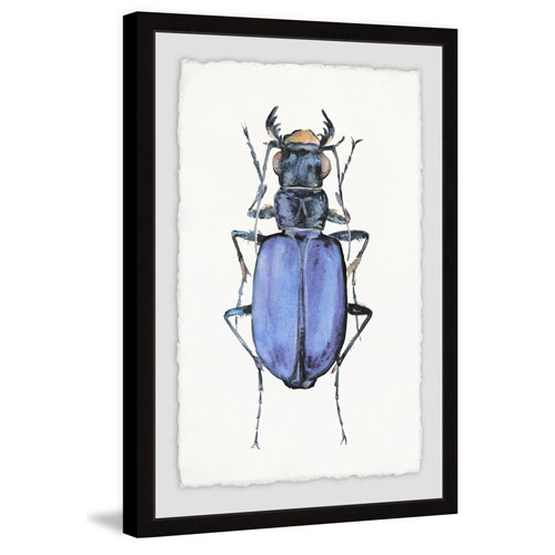 Marmont Hill Violet Beetle 12 x 8 In. Framed Painting Print