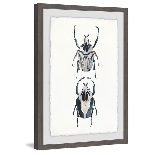 Marmont Hill Beetle Duo 36 x 24 In. Framed Painting Print