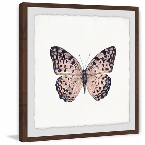 Marmont Hill Pink and Black Butterfly 12 x 12 In. Framed Painting Print