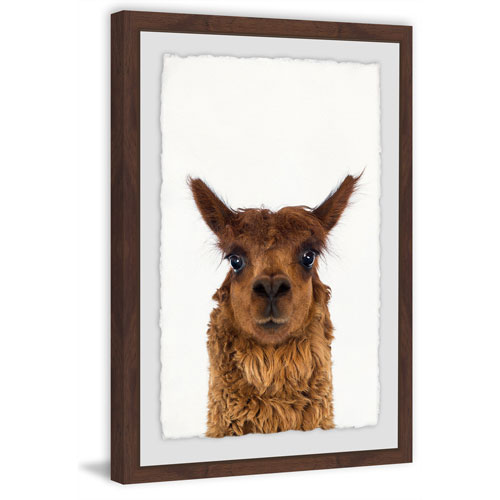 Marmont Hill Staring Llama 24 x 16 In. Framed Painting Print