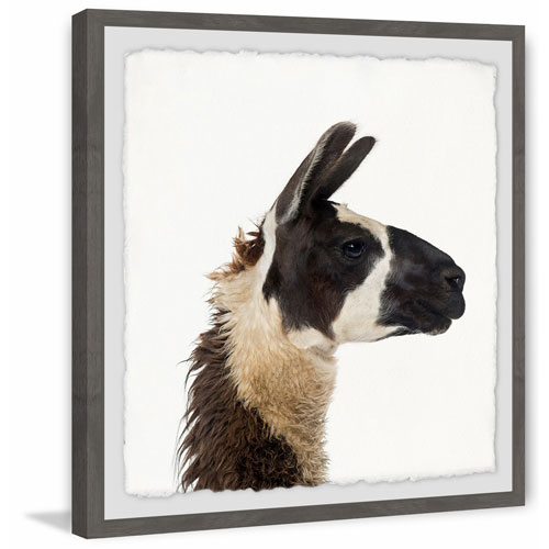 Marmont Hill Llama Profile 40 x 40 In. Framed Painting Print