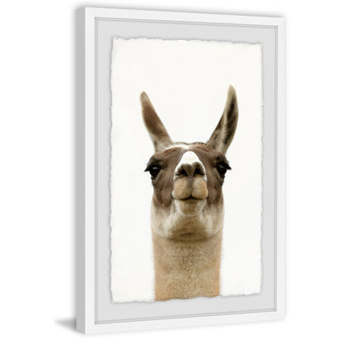 Marmont Hill Llama Face 60 x 40 In. Framed Painting Print