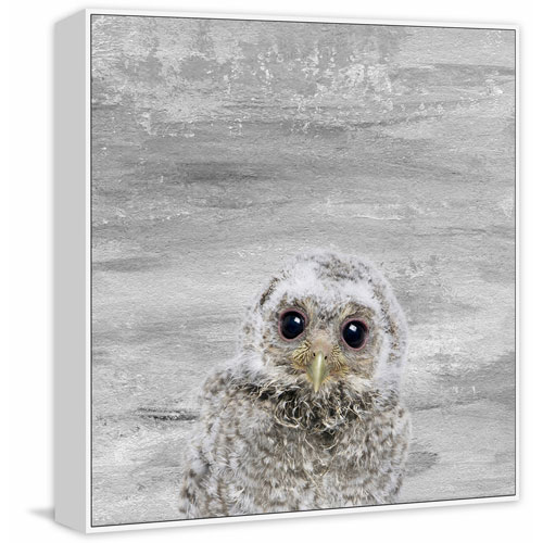 Marmont Hill Snow Owl Floater 12 x 12 In. Framed Painting Print on Canvas