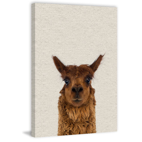 Marmont Hill Staring Llama II 60 x 40 In. Painting Print on Wrapped Canvas