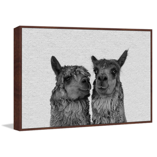 Marmont Hill Llama Couple Floater 30 x 45 In. Framed Painting Print on Canvas