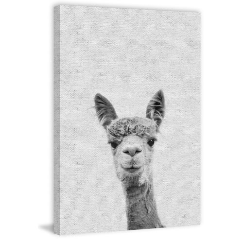 Marmont Hill Llama Face III 60 x 40 In. Painting Print on Wrapped Canvas