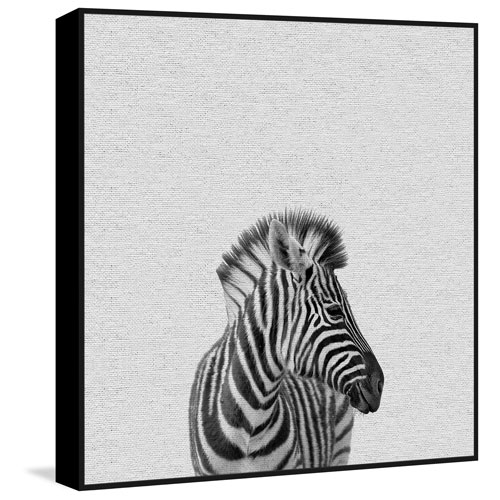 Marmont Hill Black and White Zebra Floater 40 x 40 In. Framed Painting Print on Canvas