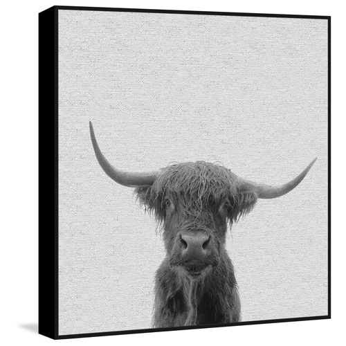 Marmont Hill Black and White Buffalo Floater 48 x 48 In. Framed Painting Print on Canvas
