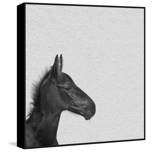 Marmont Hill Black Horse IV Floater 24 x 24 In. Framed Painting Print on Canvas