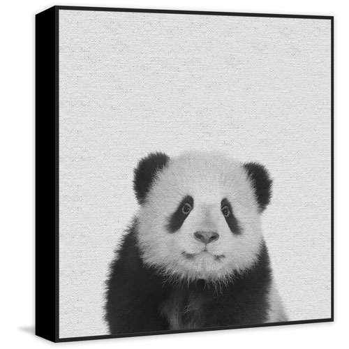 Marmont Hill Fluffy Panda II Floater 20 x 20 In. Framed Painting Print on Canvas