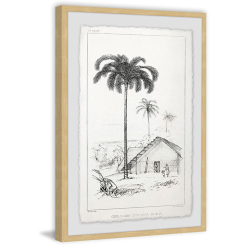 Marmont Hill The Arecaceae 24 x 16 In. Framed Painting Print