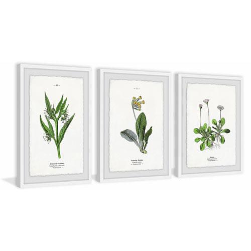 Marmont Hill Pulsatilla Flowers 36 x 72 In. Triptych