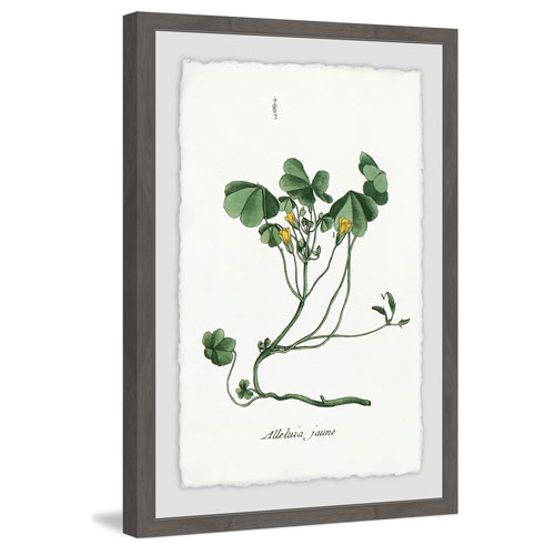 Marmont Hill As Simple as This 30 x 20 In. Framed Painting Print