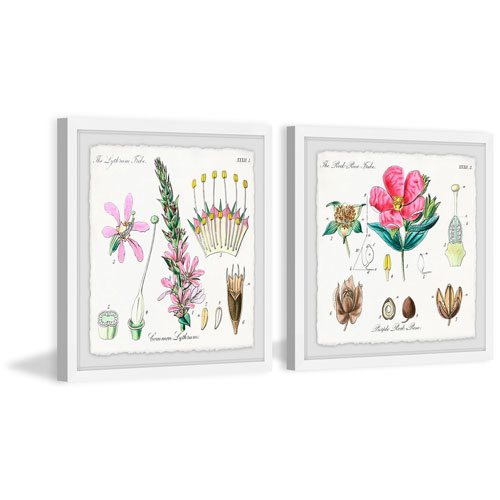 Growing Pink 18 x 36 In. Diptych