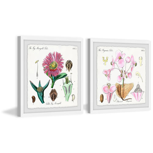 Marmont Hill Pink Plant Pair 24 x 48 In. Diptych