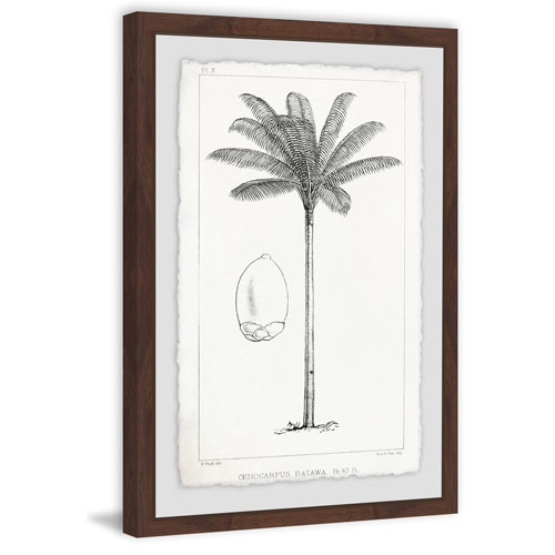 Marmont Hill Amazon Palm Tree 24 x 16 In. Framed Painting Print