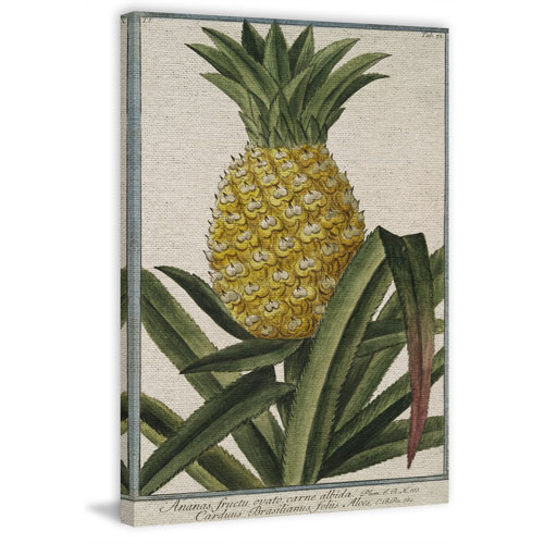 Marmont Hill Unpicked Pineapple 45 x 30 In. Painting Print on Wrapped Canvas